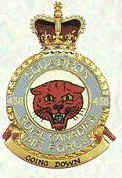 No 438 Squadron Badge