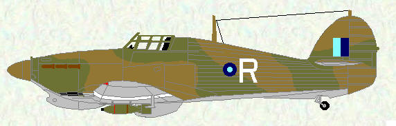 Hurricane IIC of No 113 Squadron