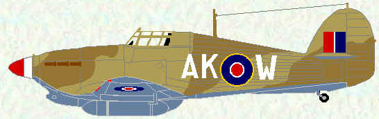 Hurricane IIA of No 213 Squadron (Egypt - 1942)