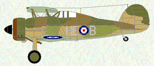 Gladiator II of No 263 Squadron (four tone scheme)