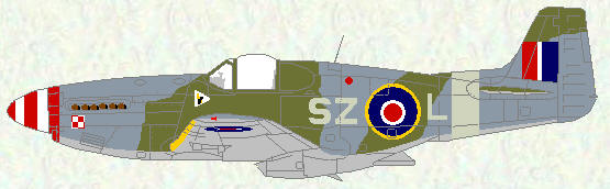 Mustang III of No 316 Squadron