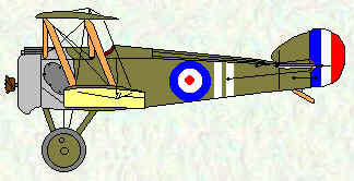 Camel of No 73 Squadron  Mar - Nov 1918