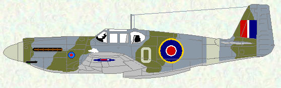 Mustang I of No 414 Squadron (only individual code letter)