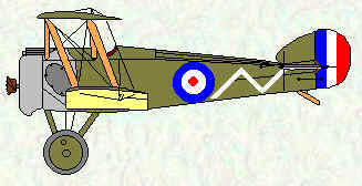 Camel of No 70 Squadron Jul 1917 - Mar 1918