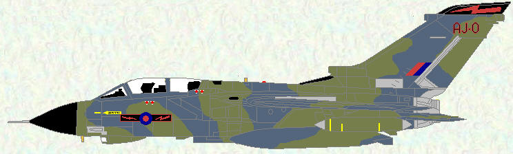 Tornado GR Mk 1 of No 617 Squadron (Grey/Green scheme)