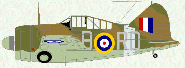 Buffalo I of No 67 Squadron