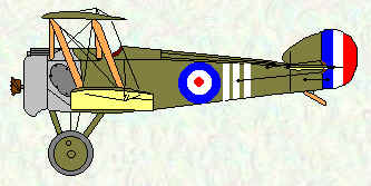 Camel of No 73 Squadron  Jan - Mar 1918