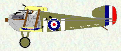 Dolphin of No 87 Squadron (Dec 1917 - Mar 1918)