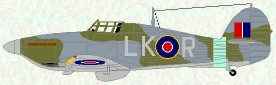 Hurricane IIC of No 87 Squadron