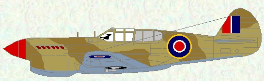Kittyhawk II as used by No 260 Squadron