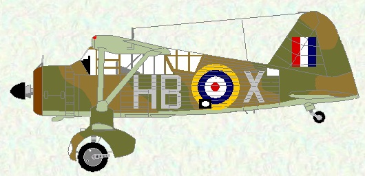 Lysander II of No 239 Squadron