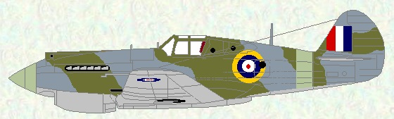 Tomahawk I/IIB as used by No 231 Squadron