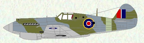 Tomahawk IIA as used by No 168 Squadron