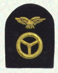 Pilots badge - other ranks