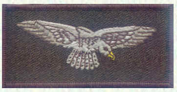 Airmens' shoulder flash 1996 - present