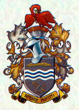 Central Flying School arms