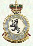 No 411 Squadron Badge