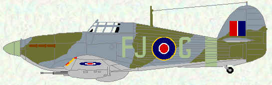 Hurricane IID of No 164 Squadron (June 1943)