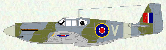 Mustang I of No 168 Squadron (standard day fighter scheme)