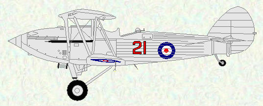 Hawker Hind of No 21 Squadron