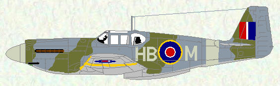 Mustang I of No 239 Squadron (standard day fighter scheme)
