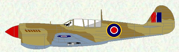 Kittyhawk IV as used by No 250 Squadron