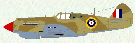 Tomahawk IIB as used by No 250 Squadron